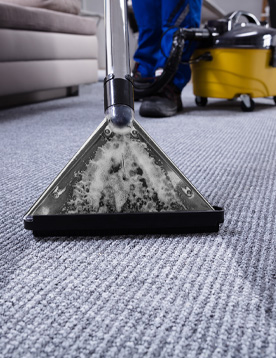 Commercial Carpet Cleaning Services in Farmington Hills, MI | Wonder Janitorial - carpets